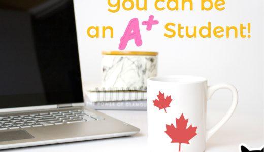 【元々の頭の良さは関係ない!】留学生がA+をとるために気をつけるべき3つのこと
